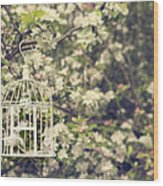 Birdcage In Blossom Wood Print