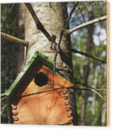 Birdhouse By Line Gagne Wood Print