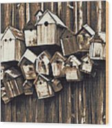 Birdhouse Condominium Wood Print