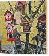 Birdhouse Subdivision Wood Print
