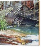 Birdrock Waterfall In Spring 2 Wood Print