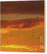 Birds Against Sunset Sky Wood Print
