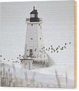 Birds And Lighthouse Wood Print