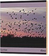 Birds At Sunrise Poster Wood Print