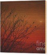 Birds At Sunset Wood Print