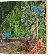 Birds Bathing Wood Print