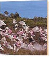 Birds Call To Flight Wood Print