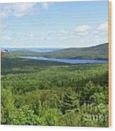 Bird's Eye View Of Eagle Lake Wood Print