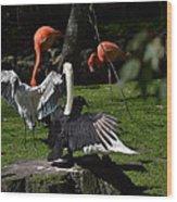 Birds Gather Wood Print