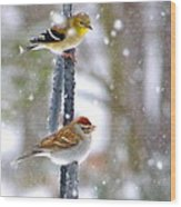 Birds In A Snowstorm Wood Print