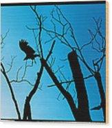 Flying Wood Print by Paulette Maffucci