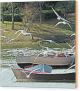 Birds In Flight At The Lake Wood Print