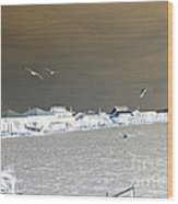 Birds In Flight Over Lafitte Bay Wood Print