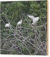 Birds In The Brush Wood Print