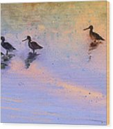 Birds In The Camargue Wood Print
