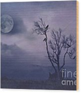 Birds In The Night Wood Print