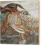 Birds Landing Wood Print
