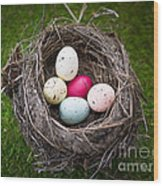 Bird's Nest With Easter Eggs Wood Print