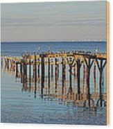 Birds On Old Dock On The Bay Wood Print
