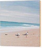 Birds On The Beach 0004 Wood Print