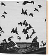 Birds Over City - Featured 3 Wood Print