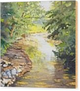 Bird's Trail Creek Wood Print