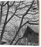 Birds Winter 1 Wood Print