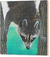 Birdseed Bandit Wood Print