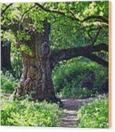 Birnam Wood Scotland Wood Print