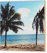 Biscayne Bay Florida Wood Print