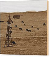 Bison And Windmill Wood Print