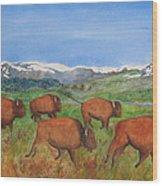 Bison At Yellowstone Wood Print