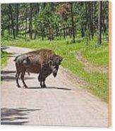 Bison Blocking The Road Wood Print