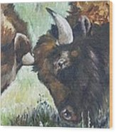 Bison Brawl Wood Print