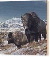 Bison Herd In Winter Wood Print