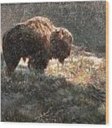 Bison In The Snow Wood Print by Aaron Blaise