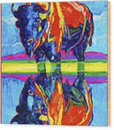Bison Reflections Wood Print