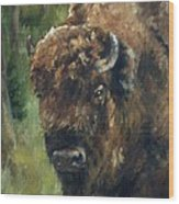 Bison Study - Zero Three Wood Print