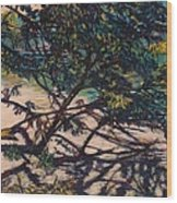 Bisset Park Original Wood Print