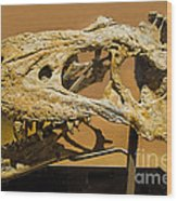 Bistahieversor Dinosaur Skull Fossil Wood Print