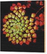 Bits N Pieces Waterlily Wood Print
