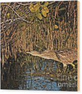 Bittern Stretched Out Wood Print