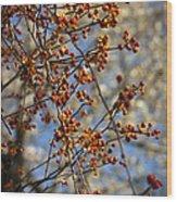 Bittersweet Vertical Wood Print by Teresa Mucha
