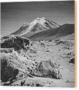 Bizarre Landscape Bolivia Black And White Select Focus Wood Print