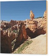 Bizarre Shapes - Bryce Canyon Wood Print