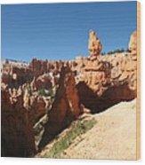 Bizarre Shapes - Bryce Canyon Wood Print