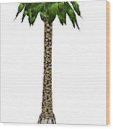 Bjuvia Simplex Prehistoric Tree Wood Print