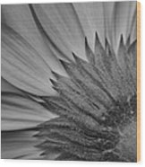 Black And White Blossom Wood Print