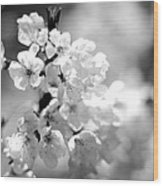 Black And White Blossoms Wood Print