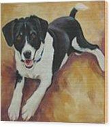 Black And White Dog Wood Print